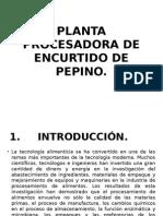 Planta Procesadora de Encurtido de Pepino