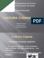 Cultura Cigana