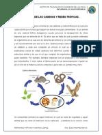 Análisis de Las Cadenas y Redes Tróficas