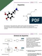 PSICOFARMACOLOGÍA TEMA 2(dopamina) - ULL