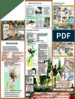 ESPACIO PUBLICO LAMINA.pptx