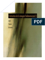 estructura de la imagen