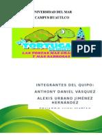 Trabajo de Las Tortugas de Huatulco