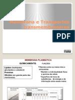 Apresentação Membrana e Movimentos Transmembranares