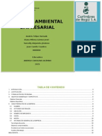 Gestion Ambiental Emresarial