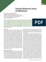 Macrophage Diversity Enhances Tumor Progression and Metastasis