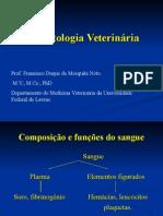 Hematologia 95.Ppt Sf