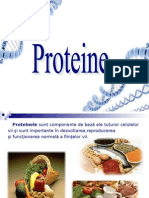 Grupa 3 - Proteinele