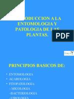 B Conceptos Basicos Sobre Plagas