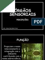 ÓRGÃOS SENSORIAIS