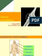 20111110122438_inedi.sistema.esqueletico.ppt