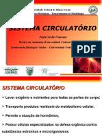 Sistema+Circulatório+(+UFMG).ppt