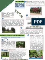 arborizacion del espacio urbano