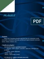 PLAGILE Si Monitoring