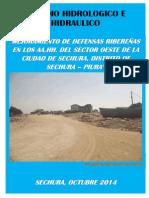Estudio Hidrologico e Hidraulico Defensa Ribereña