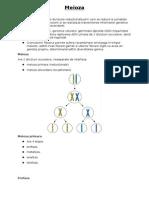 Genetica meioza + crz