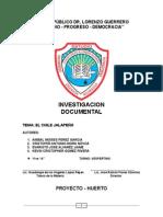 Monografia Del Chile