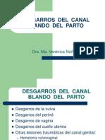 30-desgarrosdelcanaldelpartomariaveronica-120914105610-phpapp01.pdf