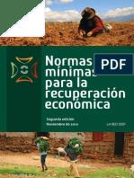 Normas Minimas para la Recuperacion Economica MERS