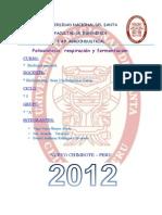 fotosintesisrespiracionyfermentacion-120629151633-phpapp01