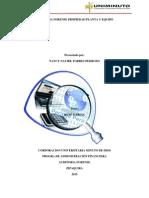 Auditoria Propiedad, Planta y Equipo