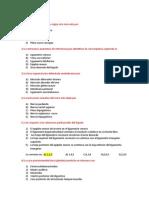 Examen Final de Morfo 2 - 2012ii