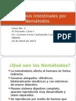 Parasitosis Intestinales Por Nemátodos