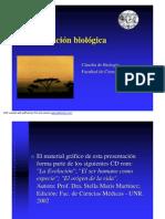 evolucic3b3nbiolc3b3gica_1.pdf