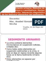 T17-sedimento urinario