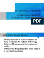 Integrated Project