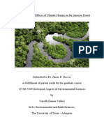effects of climate change on the amazon forest - v  valluri