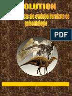 Dovezi ale paleontologiei