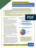 kidney_factsheet.pdf