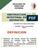 obstruccion intestinal en neonatos.pptx