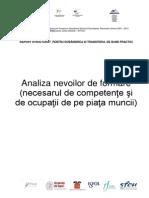 05.1 Raport Structurat Bune Practici Analiza Nevoilor