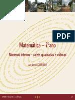 SinteseRaizes.pdf