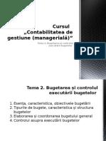 CGTema 2