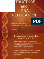 Dna Replication Genetics