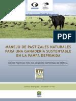 0981-Manual Manejo Pastizales - Kit AA-FVSA