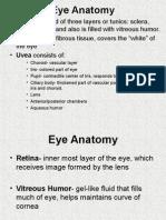 WEB Eyes.ppt