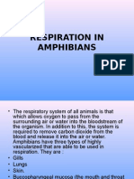 RESPIRATION IN AMPHIBIANS AND REPTILES.ppt