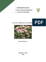 EL CULTIVO DE LA ALSTROEMERIA.pdf
