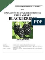 Blackberry 2013