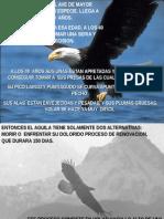 Aguilas RenoVada