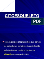 CITOESQUELETO-I [Autoguardado].ppt
