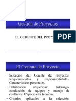 Gerente de Proyectos
