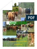 08_09_53_tema1_ganado_bovino.pdf