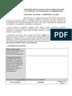 FORMATO RESUMEN PROYECTO  feria.doc