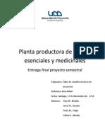 Estudio Tecnico de planta de aceites escenciales Chile