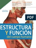 89567 anatomia